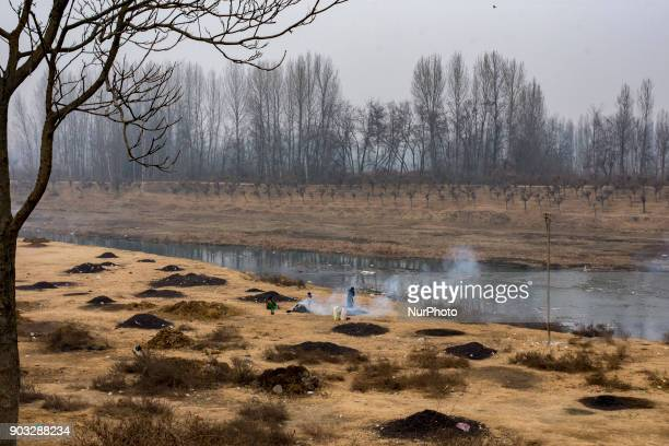 A Kashmiri woman burn the water chestnut shells to obtain charcoal which will be later used as fuel in kangris an earthenware container with an outer...