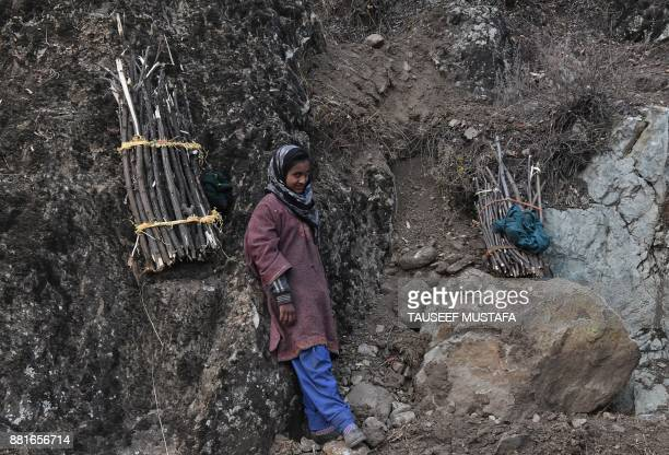 Kashmiri woman rests after collects firewood as she walks towards her home in the outskirts of Srinagar on November 29 2017 A cold wave reached the...