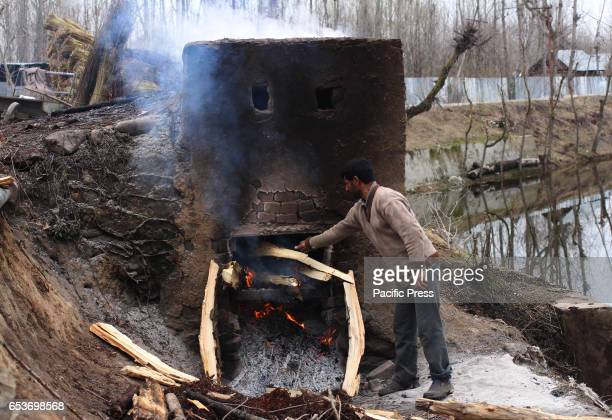 Kashmiri young man puts firewood into a small kiln for heating wicker for easy peeling in the outskirts of Srinagar in Indian Controlled Kashmir