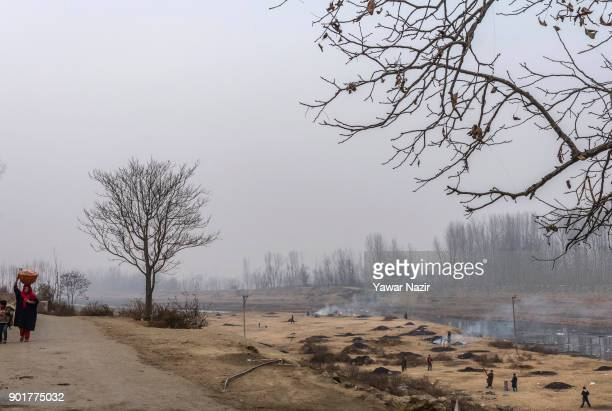 Kashmiris burn the water chestnut shells to obtain charcoal which will be later used as fuel in kangris an earthenware container with an outer...
