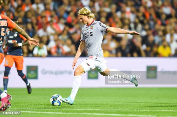 Kasper DOLBERG of Nice during the Ligue 1 match between Montpellier and Nice at Stade de la Mosson on September 14, 2019 in Montpellier, France.