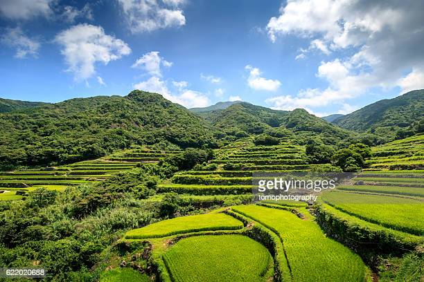 kasuga tanada - nagasaki prefecture stock pictures, royalty-free photos & images