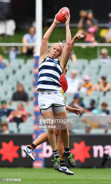 Kate Darby of the Cats marks during the AFLW Preliminary Final match between the Adelaide Crows and thew Geelong Cats at Adelaide Oval on March 24...