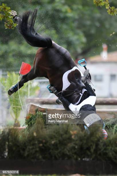 Kate Herdson and her horse Eon fall at the water during the CIC2* Cross Country phase during New Zealand Horse of the Year on March 17 2018 in...