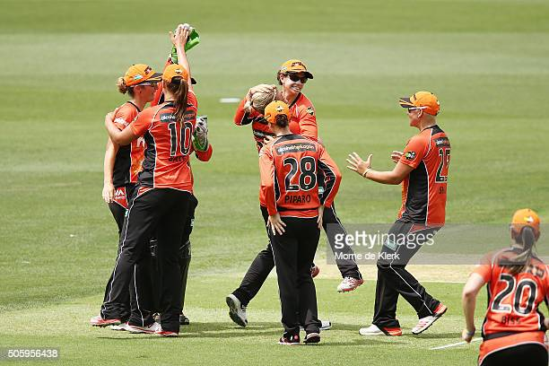 Katherine Brunt of the Perth Scorchers celebrates with teammates after getting the wicket of Stafanie Taylor of the Sydney Thunder during the Women's...