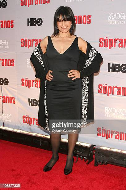 Kathrine Narducci during The Sopranos Final Season World Premiere Arrivals at Radio City Music Hall in New York City New York United States
