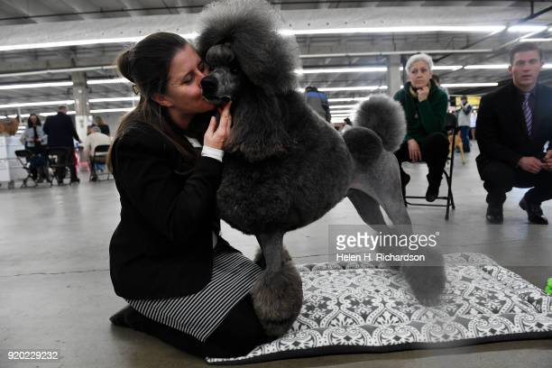 Kathy Adams gives her three year old Standard Poodle Colorado Chrome a kiss before taking part in a competition during the Colorado Kennel Club Dog...