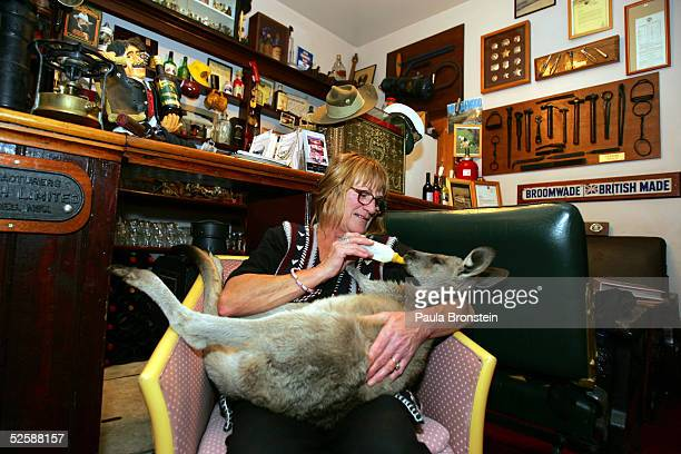 """Kathy Noble feeds milk to """"Baby Boomer"""", an eleven month old Eastern Grey Kangaroo, at the Comet Inn April 1, 2005 in Hartley Vale, Australia...."""