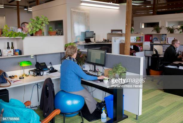 Kathy Sylvester a major gifts manager at the Nature Conservancy works at her desk while sitting on an exercise ball at the office in Brunswick The...