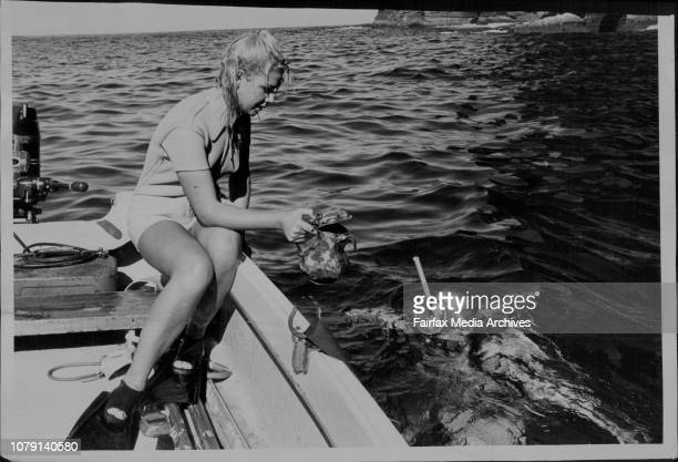 Kathy Troutt established an unofficial world diving record for women of 320 feet May 23 1965