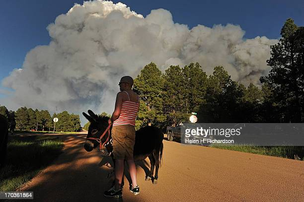 Katie Adamson holds onto a donkey that she found wandering along the road while her sister Heather Stanley left attends to their horses off of...
