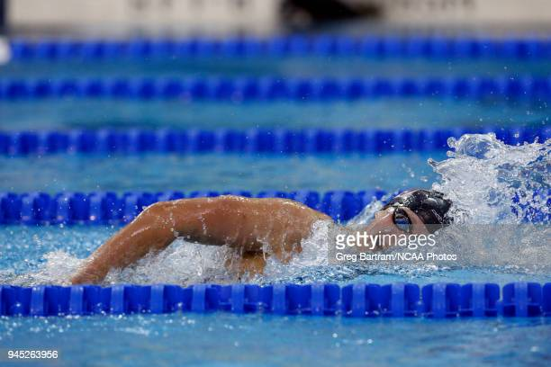Katie Ledecky of Stanford approaches the wall as she competes in the 1650 yard freestyle during the Division I Women's Swimming Diving Championship...