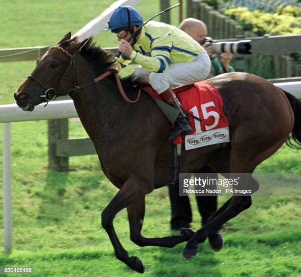 Katy Nowaitee ridden by John Reid wins The Tote Cambridgeshire at Newmarket races
