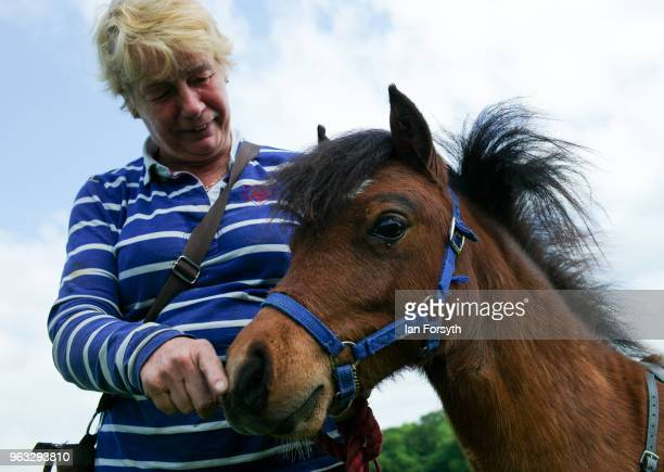 Katy Smith from Northallerton brings Digby the UK's only guide horse to the Duncombe Park Country Fair on May 28 2018 in Helmsley England The idea of...