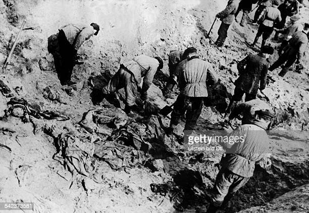 2WW Katyn massacre spring 1940 exhumation of corpses by a german guided investigation commission Opening of a mass grave April 1943