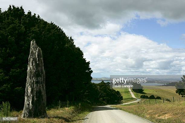 Kauri Tree welcomes guests at the top of the drive to The Lodge with the Kauri Cliffs Golf Course at the Lodge at Kauri Cliffs on March 17 in Matauri...