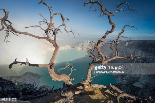 kawah ijen volcano crater in a morning, east java, indonesia - java stock pictures, royalty-free photos & images