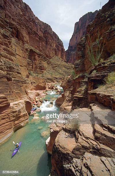 kayaker on havasu creek - havasu creek stock photos and pictures