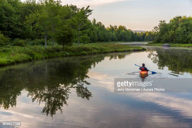 a kayaker on northeast creek on mount desert island. bar harbor, maine. - paddling stock pictures, royalty-free photos & images