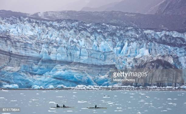 Kayakers in Glacier Bay National Park