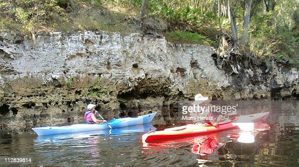 Kayakers paddle along the Suwannee River near White Springs Florida on October 12 2010