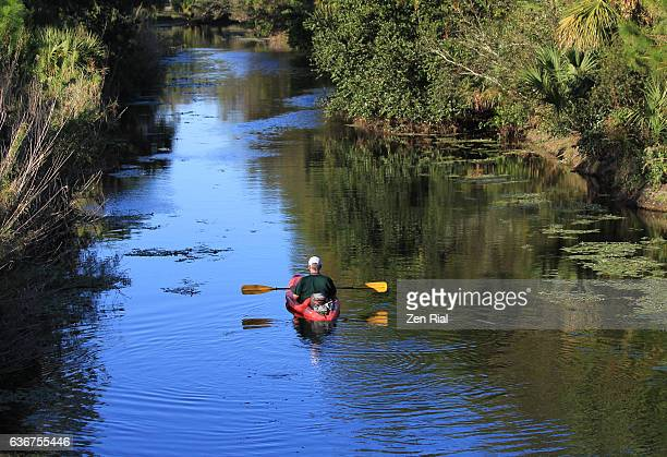 kayaking in loxahatchee river in jupiter, palm beach county, florida - palmetto florida stock pictures, royalty-free photos & images
