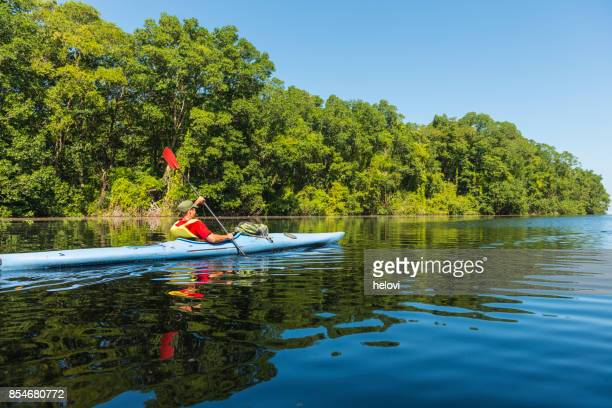 kayaking in the cacao lagoon - mangrove tree stock pictures, royalty-free photos & images