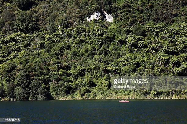 kayaking on lake tarawera, rotorua - gerhard egger stock pictures, royalty-free photos & images