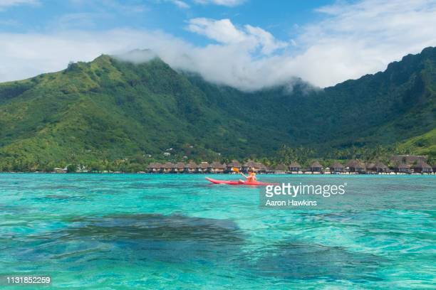 kayaking on the clear aquamarine waters in the lagoon surrounding the island of moorea, french polynesia - french polynesia stock pictures, royalty-free photos & images