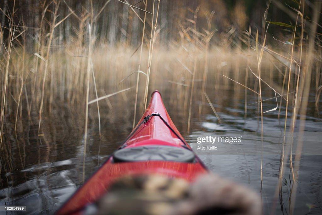 Kayaking : Stock Photo