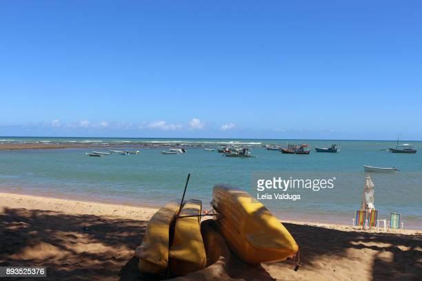 Kayaks for touring - Praia do Forte - BA -