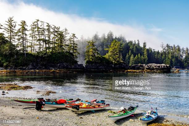 kayaks on a beach in the broken group islands, pacific rim national park reserve, off the west coast of vancouver island - vancouver island stock pictures, royalty-free photos & images