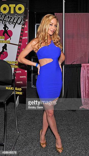 Kayden Kross attends Day 2 of EXXXOTICA 2014 at New Jersey Convention and Exposition Center on November 8, 2014 in Edison, NJ.