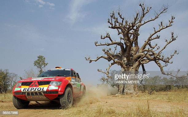 France's Stephane Peterhansel passes by a baobab to finish third during the tenth stage of the 28th Dakar Rally between Kiffa and Kayes, 10 January...