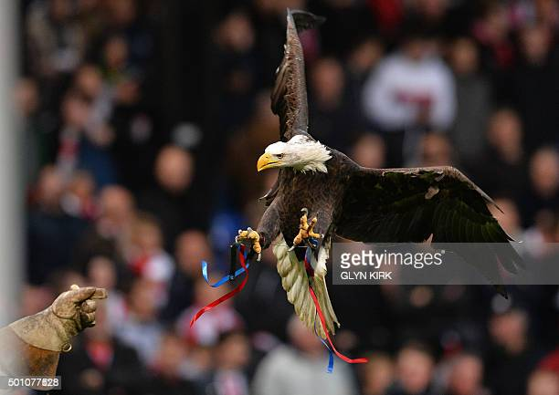 Kayla an American Bald Eagle and the mascot of Crystal Palace is seen ahead of the English Premier League football match between Crystal Palace and...