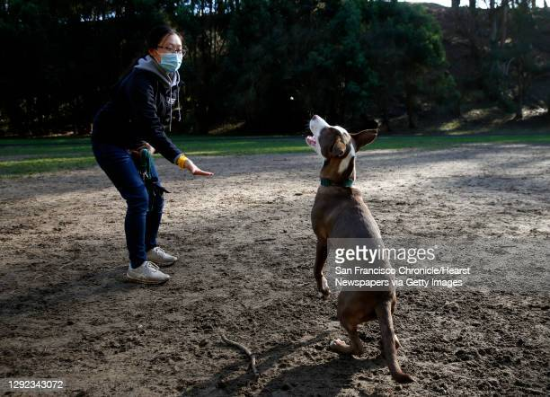 Kayla Cai tosses a treat to 6-month-old puppy Mocha at the Stern Grove off-leash dog park in San Francisco, Calif. On Thursday, Dec. 17, 2020. The...