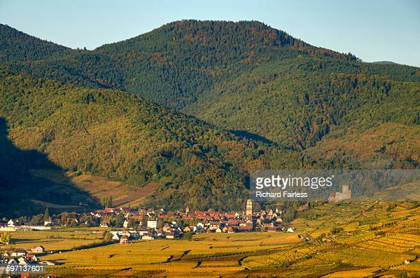 kaysersberg, alsace - lorraine stock pictures, royalty-free photos & images