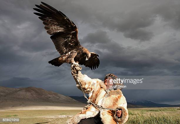 kazak eagle hunter - hugh sitton stock pictures, royalty-free photos & images
