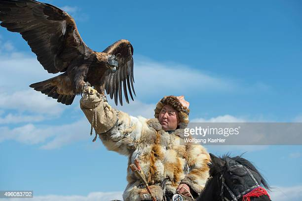 Kazakh eagle hunter showing off his golden eagle at the Golden Eagle Festival on the festival grounds near the city of Ulgii in the BayanUlgii...