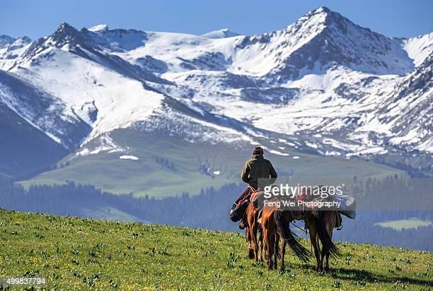 kazakh horse rider, kalajun grassland, xinjiang china - カザフスタン ストックフォトと画像