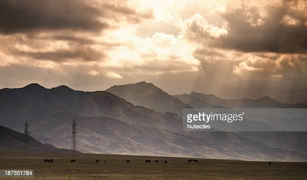Kazakhstan in summer