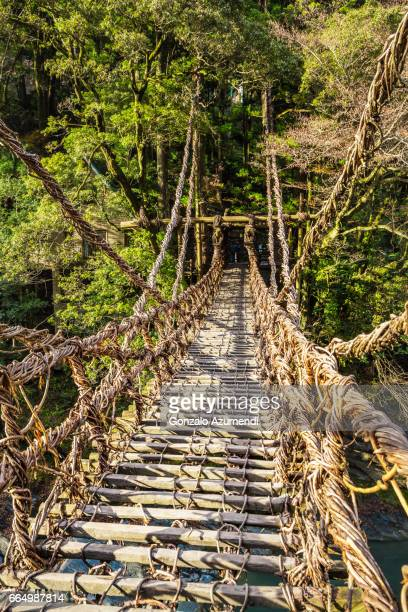 kazurabashi bridge at iya valley. - vale de iya - fotografias e filmes do acervo