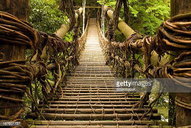kazurabashi vine bridge - suspension bridge stock photos and pictures