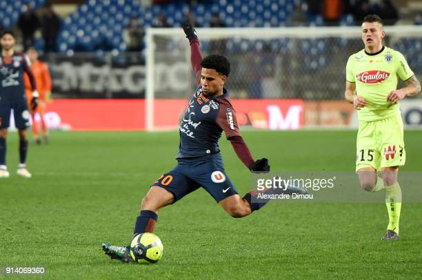 Keagan Dolly of Montpellier during the Ligue 1 match between Montpellier and Angers at Stade de la Mosson on February 3 2018 in Montpellier