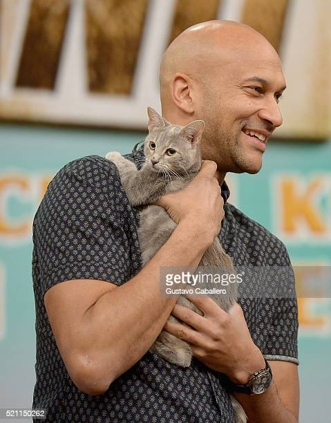 KeeganMichael Key is on the set of Univisions despierta America in support of thefilm Keanu at Univision Headquarters on April 14 2016 in Miami...