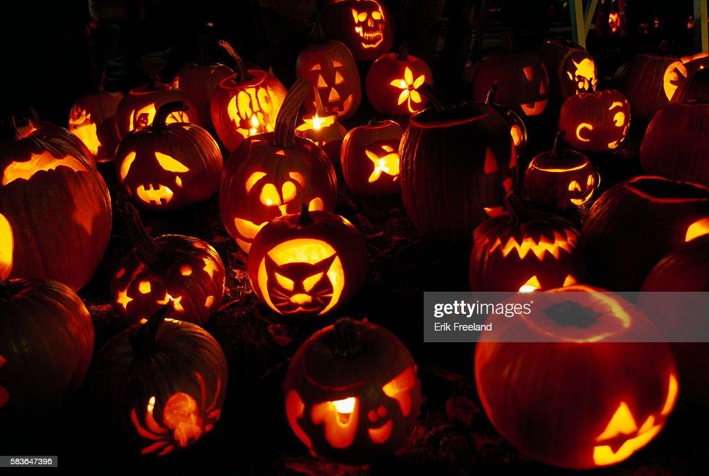 Carved Pumpkins at Festival : News Photo