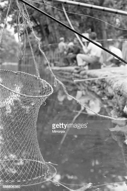 Keep net belonging to boys fishing in Battersea Park 7th August 1963