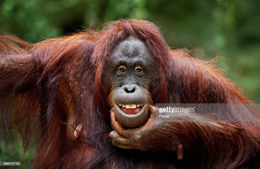 keep smiling : Stock Photo