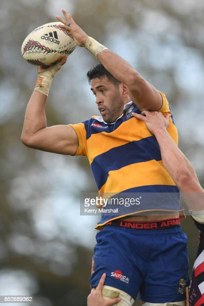 Keepa Mewett of Bay of Plenty takes a lineout during the round six Mitre 10 Cup match between Bay of Plenty and Counties Manukau Tauranga Domain on...