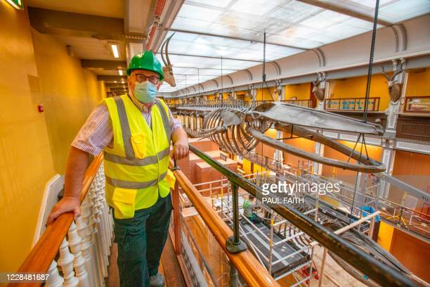 Keeper of National Museum of Ireland, Nigel Monaghan, poses for a photograph as he oversees the dismantling of a 65-foot fin whale skeleton , and a...